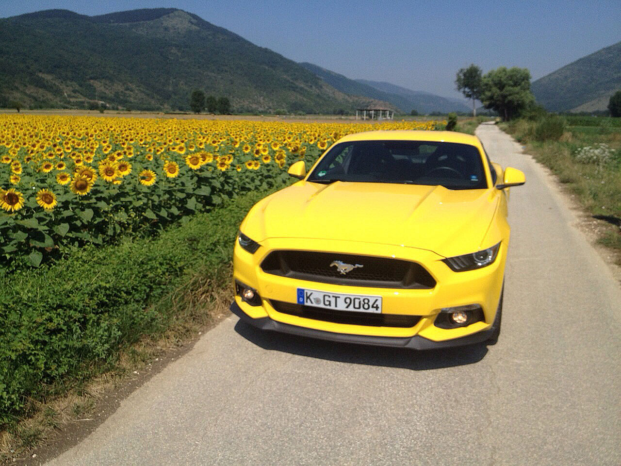Reportage-Ford-Roma-26